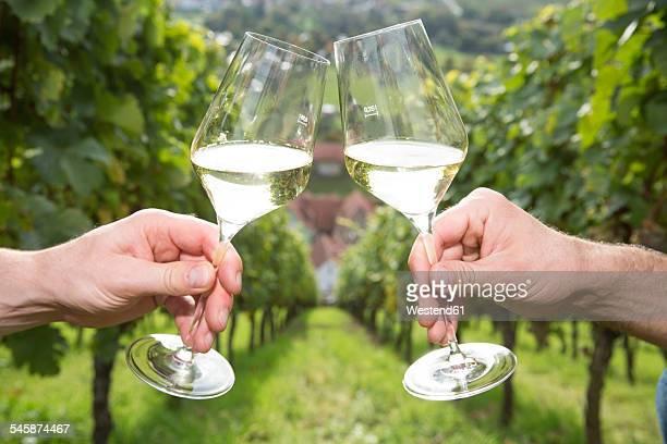 Germany, Bavaria, Volkach, clinking glasses in vineyard
