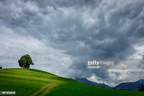 Germany, Bavaria, Wittelsbacher Hoehe