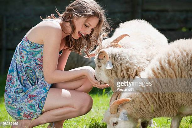 Germany, Bavaria, Young woman feeding sheep, smiling