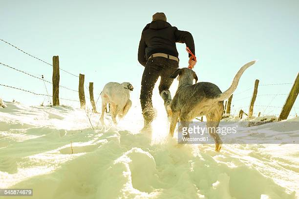 Germany, Bergisches Land, man running with dogs in winter landscape