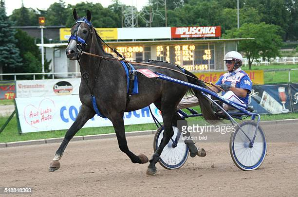Germany Berlin Tempelhof Buddenbrock Race on the harness racing track Mariendorf champion Heinz Wewering with Halali