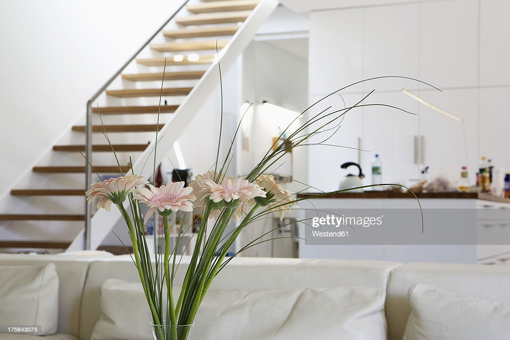 Germany, Berlin, Various flower in modern interior : Stock Photo