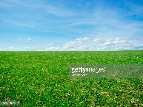 Germany, Black Forest, view to a meadow