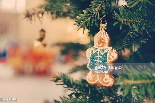 Germany, Bonn, Christmas decoration, gingerbread man on a tree