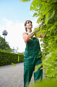Germany, Cologne, Young woman cutting leaves with shears, smiling