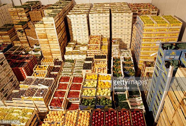 DEU Germany Duesseldorf 1999 Turks in Germany Wholesale market the importexport GmbH Marmara in the morning Refrigeration fruits and vegetables