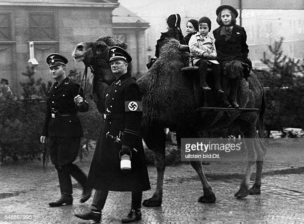 Germany Free State Prussia Berlin Berlin Collecting of Donations by the SS Children riding on camels leaded by two SS men whos horses are in the war...