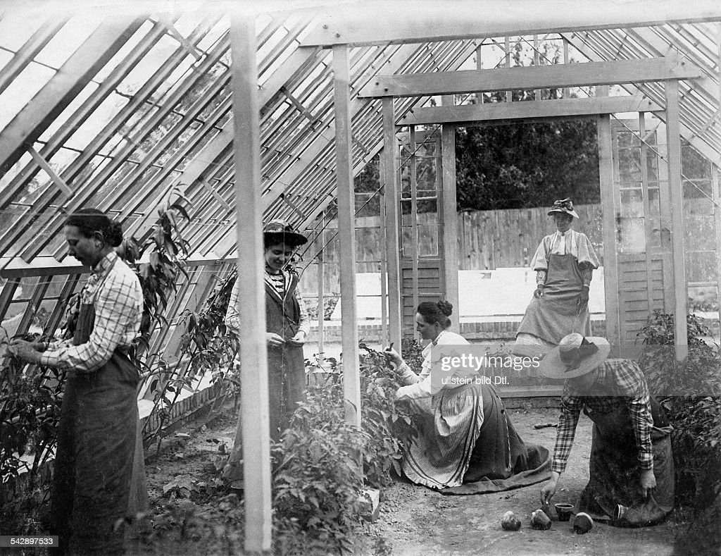 Germany gardening school in berlin marienfelde for educated women students gardening in the glasshouse