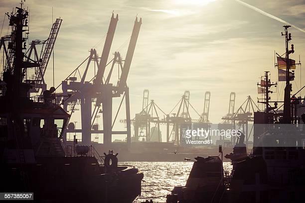 Germany, Hamburg, Port of Hamburg, Harbour cranes and towboats at sunset