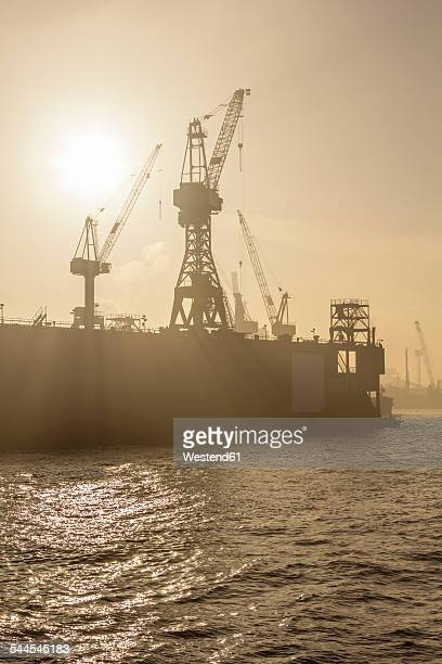 Germany, Hamburg, silhouette of cranes in the fog over the Elbe river