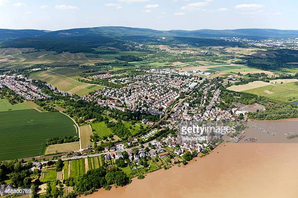 Germany, Hesse, High water of River Rhine near Wiesbaden, aerial photo
