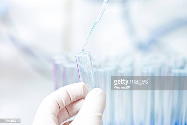 Germany, Human hand pipetting blue liquid into test tubes