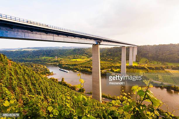 Germany, Koblenz, View of motorway bridge Moselle Viaduct crossing Mosel Valley