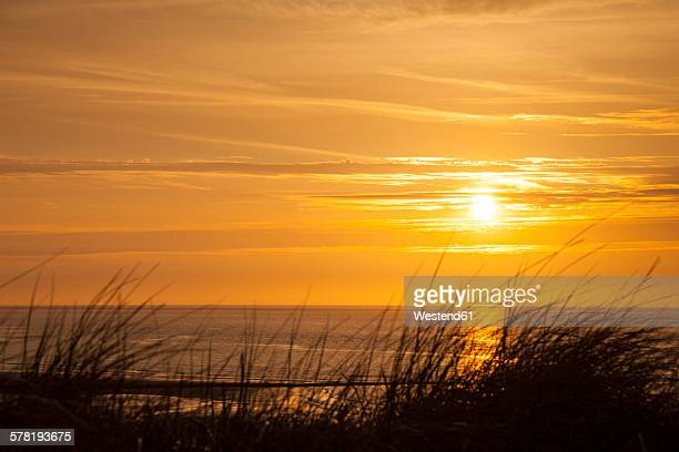 Germany, Lower Saxony, East Frisia, Wangerooge, North Sea Coast at sunset