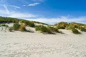 Germany, Lower Saxony, East Frisian Island, Juist, dune landscape