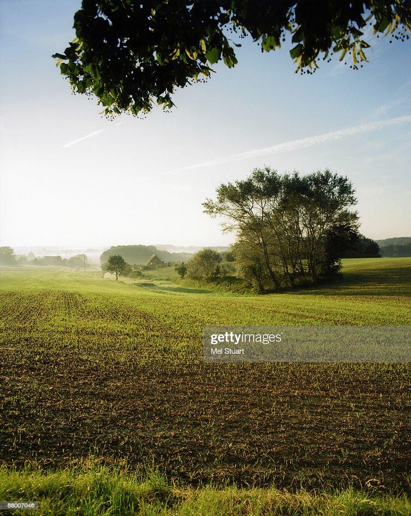 Germany, Lower Saxony, landscape