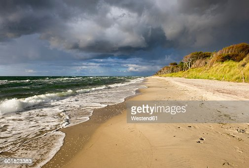 Germany, Mecklenburg-Western Pomerania, Baltic Sea beach in Born auf dem Darss