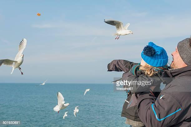 Germany, Mecklenburg-Western Pomerania, Ruegen, father and son feeding seagulls