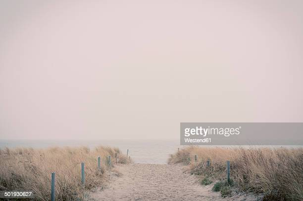 Germany, Mecklenburg-Western Pomerania, Ruegen, footpath through strand dunes