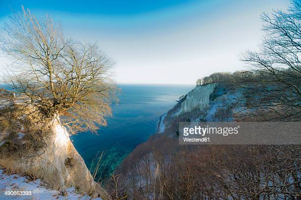 Germany, Mecklenburg-Western Pomerania, Ruegen, Jasmund National Park in winter