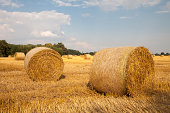 Germany, North Rhine-Westphalia, Kamen, straw bales on stubble field