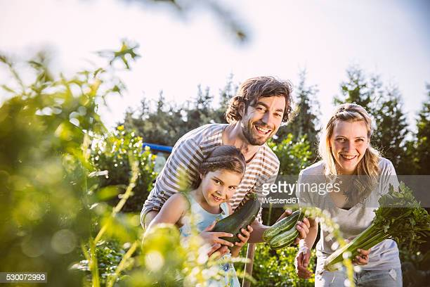 Germany, Northrhine Westphalia, Bornheim, Family working in vegetable garden