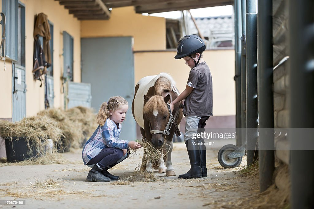 Germany, NRW, Korchenbroich, Boy and Girl at riding stable with mini shetland pony : Stock Photo