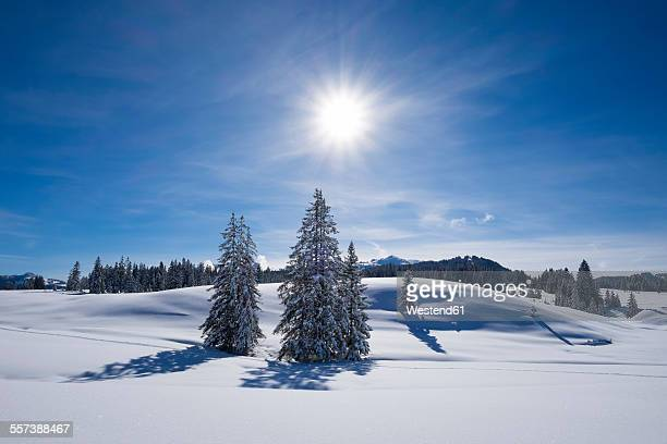 Germany, Reit im Winkl, snow-covered Winklmoosalm