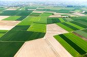 Germany, Rhineland-Palatinate, Ingelheim, View of field landscape, aerial photo
