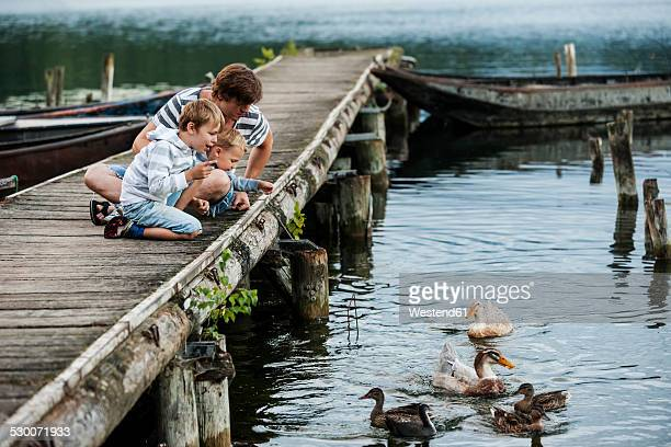 Germany, Rhineland-Palatinate, Laacher See, father with two sons on jetty feeding ducks