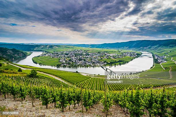 Germany, Rhineland-Palatinate, Moselle valley, river bend at Minheim