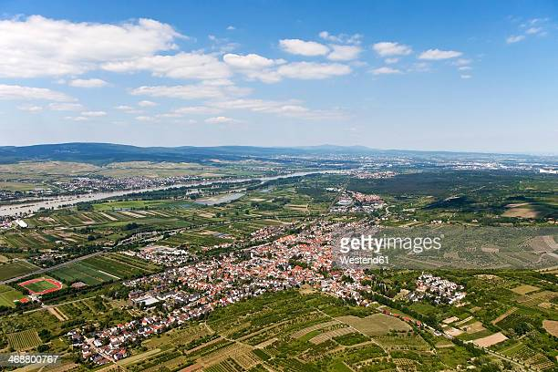 Germany, Rhineland-Palatinate, View of Heidesheim surrounded by fields, aerial photo