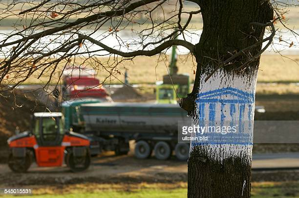 tree with the logo of the Unesco at the construction site for the Waldschloesschenbruecke' a bridge crossing the River Elbe