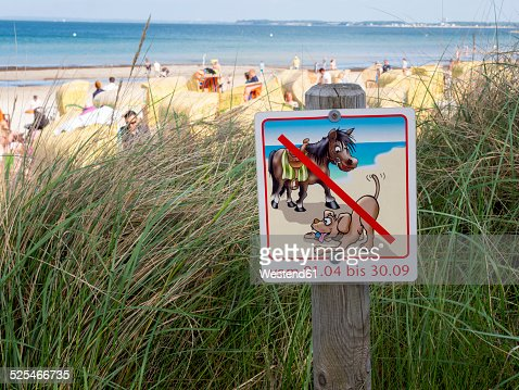 Germany, Schleswig-Holstein, Scharbeutz, no dogs and horses sign at beach