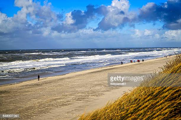 Germany, Sylt, Westerland, walkers on the beach in winter
