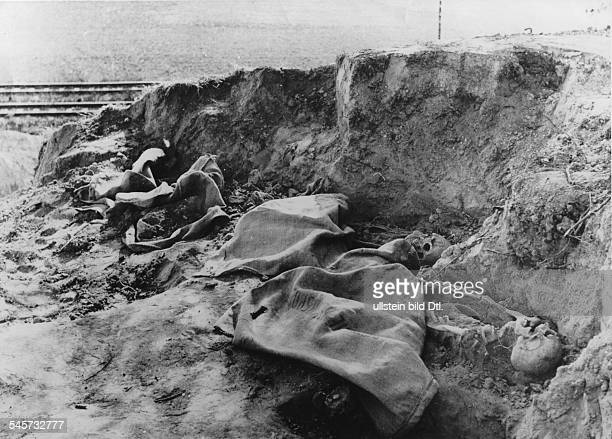 Germany Third Reich concentration camps 193945 A mass grave found near the site of the former concentration camp in Dachau