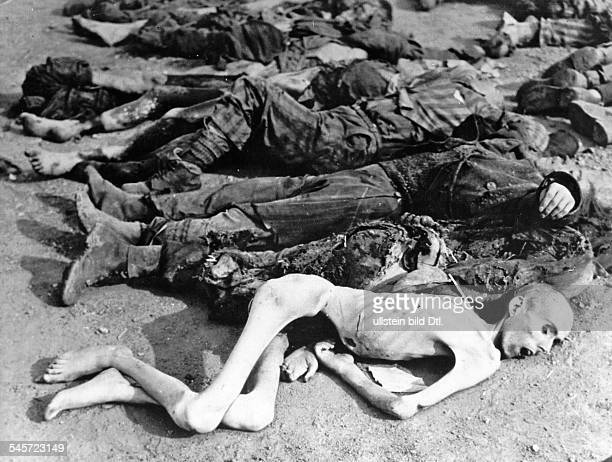 Germany Third Reich concentration camps 193945 Dead bodies of detainees after the liberation of DoraNordhausen concentration camp by US Army troops...