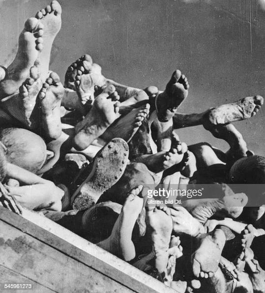 the holocaust persecution of the jews the term holocaust, originally from the greek word holokauston which means sacrifice by fire besides persecuting the jews, the nazi's took homosexuals.