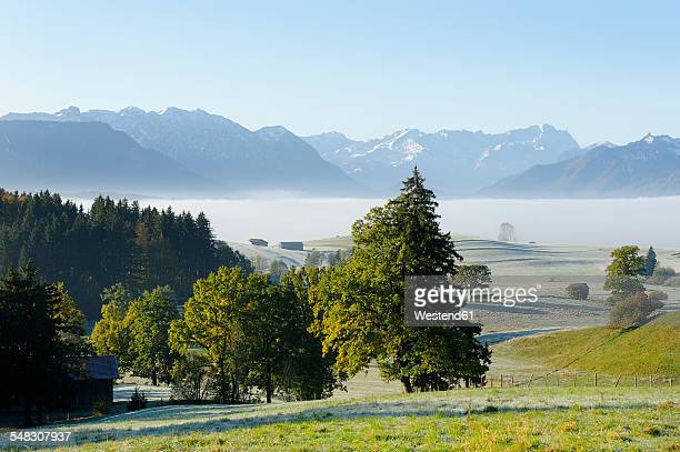 Germany, Upper Bavaria, Pfaffenwinkel, near Aidling, View to the Zugspitze in the morning
