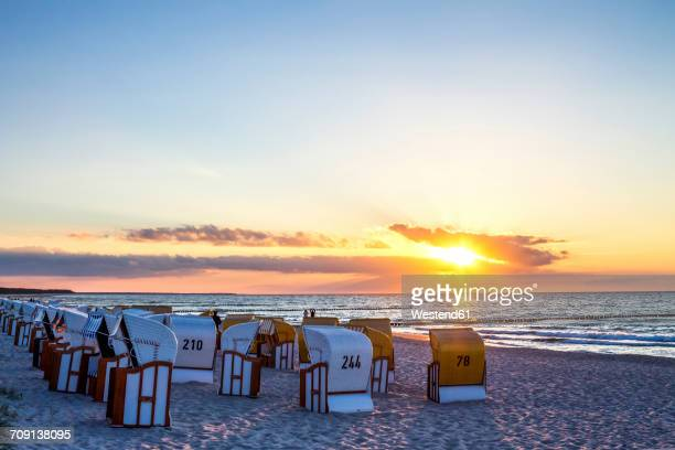 Germany, Zingst, hooded beach chairs at dawn