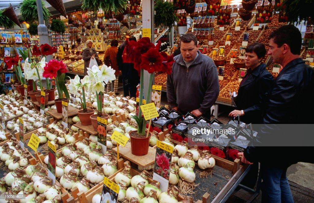 Getting advice on flowers at Bloemenmarkt flower market. : Stock Photo