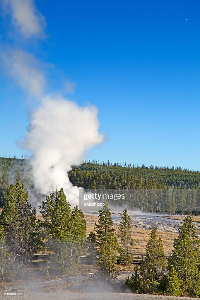 Geyser : Stock Photo