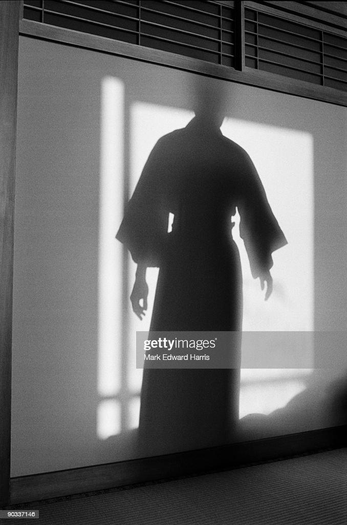 Ghost-like shadows at a Japanese Ryokan (Inn) : Stock Photo
