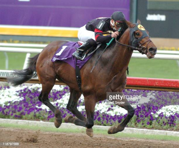 Ghostzapper with jockey Javier Castellano aboard won the Breeders Cup Classic