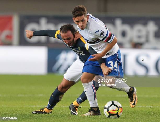 Giampaolo Pazzini of Hellas Verona competes for the ball with Lucas Torreira of UC Sampdoria during the Serie A match between Hellas Verona FC and UC...