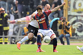 Gianluca Sansone of Bologna FC in action during the Serie B match between Bologna FC and AC Spezia at Stadio Renato Dall'Ara on April 18 2015 in...