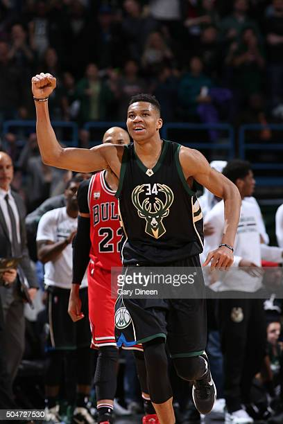 Giannis Antetokounmpo of the Milwaukee Bucks ceelbrates against the Chicago Bulls on December 12 2016 at the BMO Harris Bradley Center in Milwaukee...