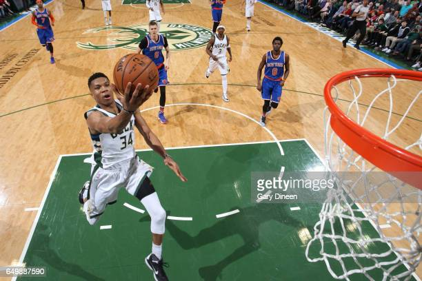 Giannis Antetokounmpo of the Milwaukee Bucks goes for a lay up against the New York Knicks during the game on March 8 2017 at the BMO Harris Bradley...