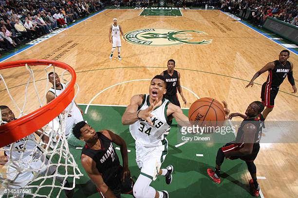 Giannis Antetokounmpo of the Milwaukee Bucks goes for the layup against the Miami Heat during the game on March 9 2016 at BMO Harris Bradley Center...