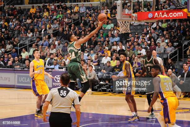 Giannis Antetokounmpo of the Milwaukee Bucks goes up for a lay up during a game against the Los Angeles Lakers on March 17 2017 at STAPLES Center in...